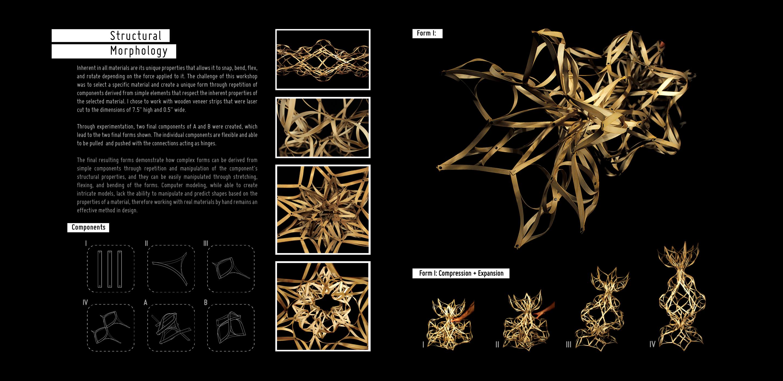 structural-morphology-1