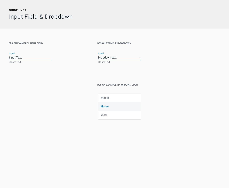 007_SSA-_-Guidelines-_-Input-Fields-Dropdown